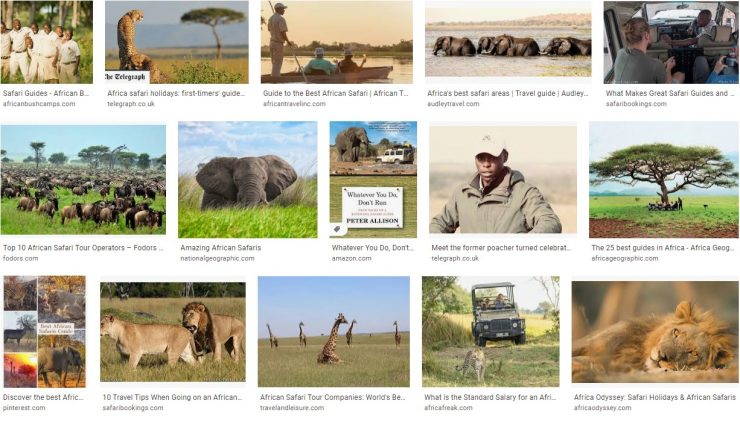 Guide to the best African Safari Guides