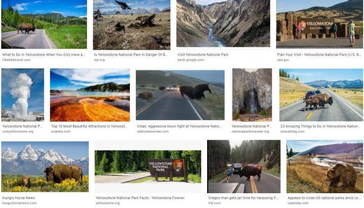 Tour Yellowstone National Park Scavenger Hunt