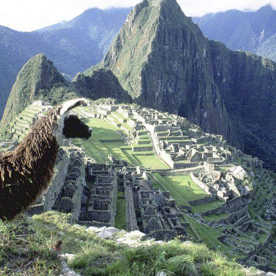 South America Tourism Statistics