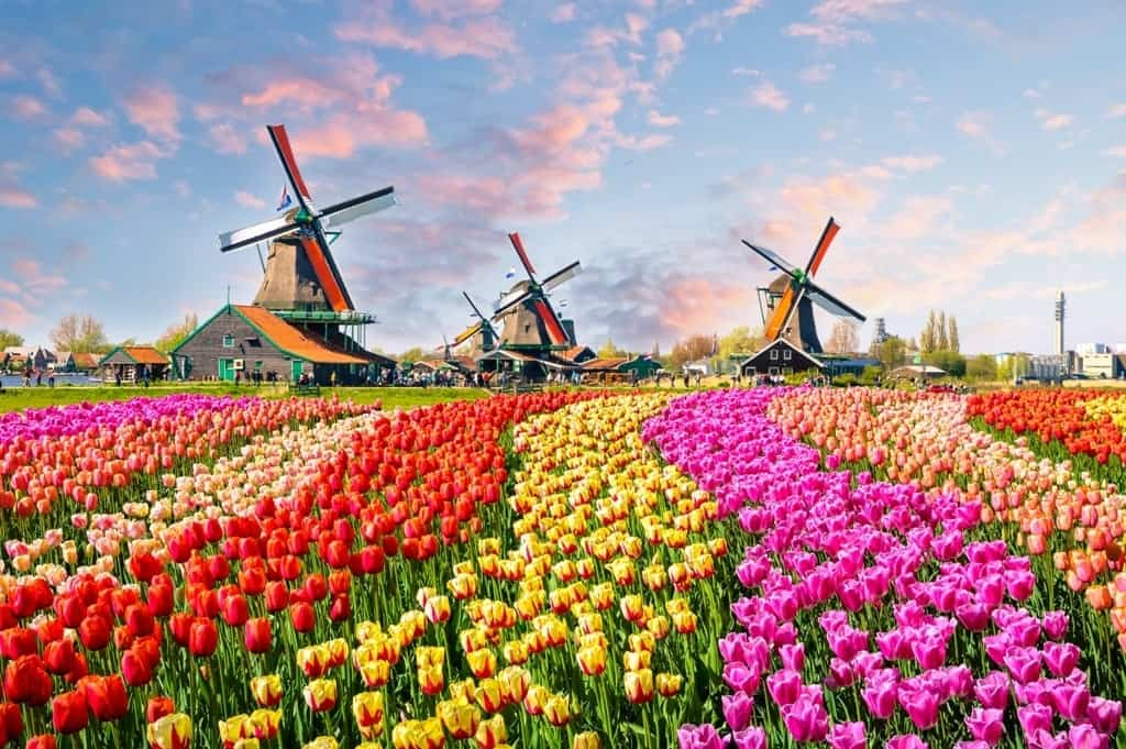 16 Beautiful Attractions in the Netherlands to Visit Absolutely