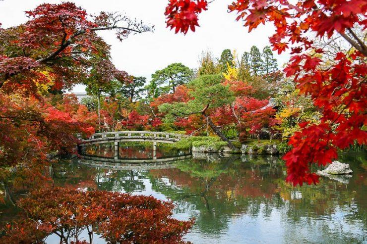 Autumn Tour in Kyoto