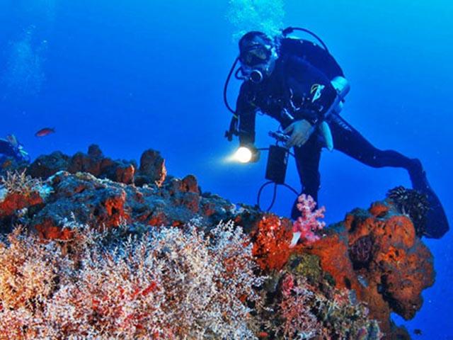 Diving on the island of Menjangan (@KorinaTour)