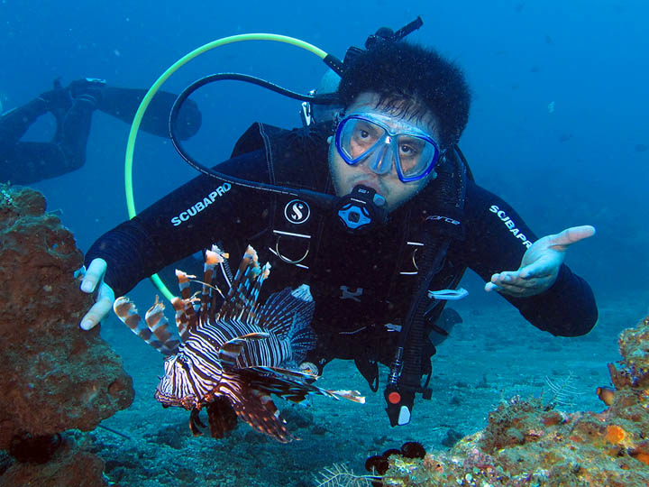 Diving-site-on-Menjangan-Island-@PRODIVEBali