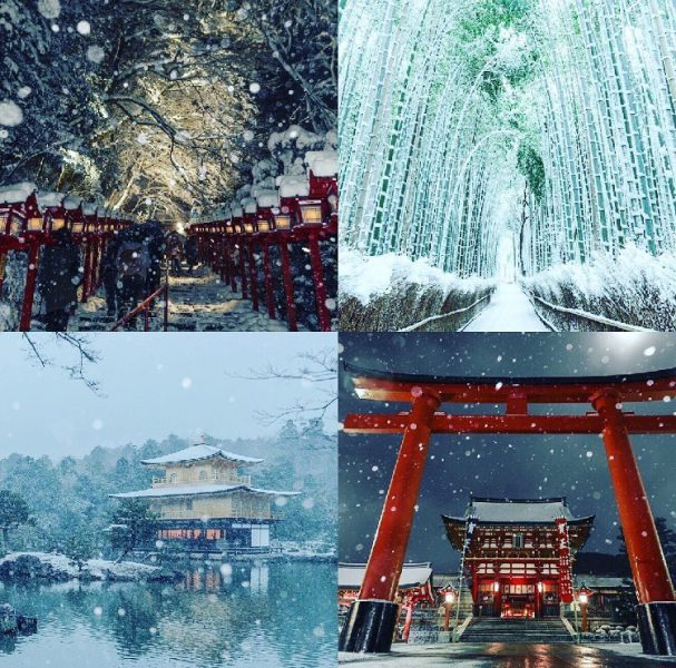 Winter to Early Spring Tour in Kyoto