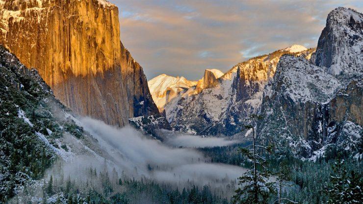 Yosemite National Park Coservation Association