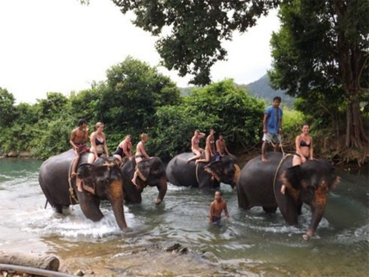 "Tour in Koh Chang ""Elephant"" Thailand"