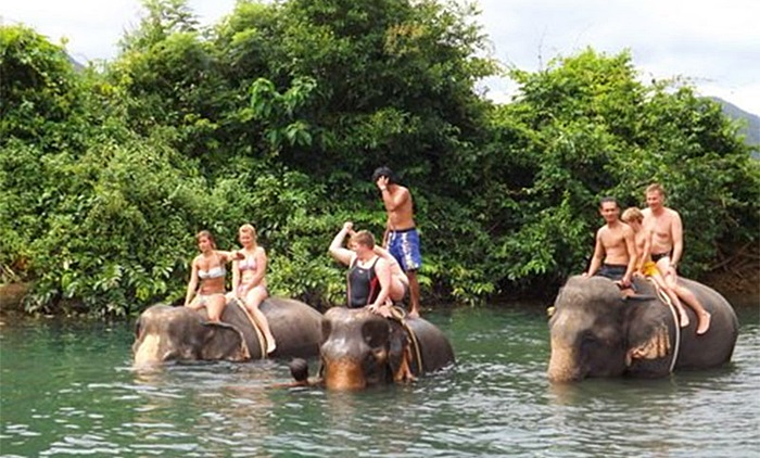 Tour in Koh Chang Elephant Thailand (hotels2thailand.com)