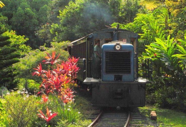 Kauai Plantation Railway (en.wikipedia.org)