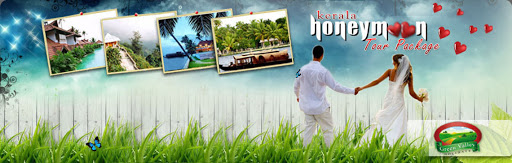 Kerala Honeymoon Tour Packages From Delhi
