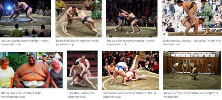 Absorbsome sumo wrestling